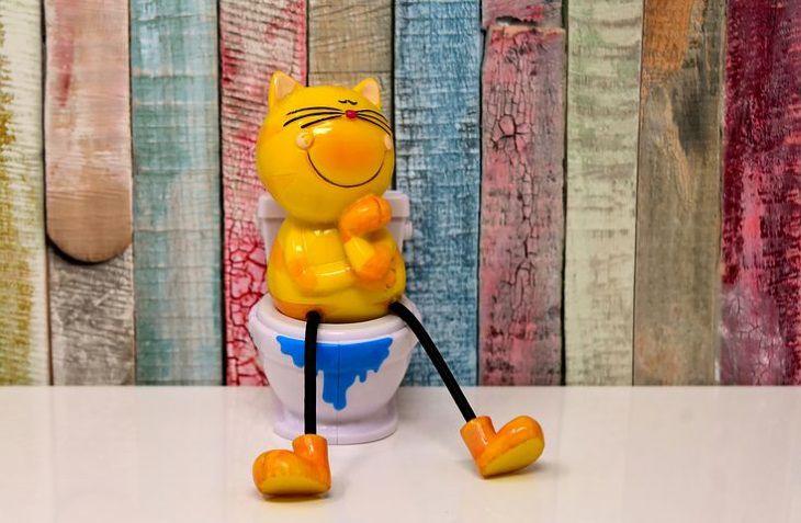 Чем могут быть опасны долгие «заседания» в туалете: мнение экспертов