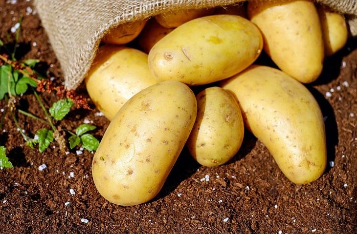 Хитрости идеального картофельного пюре