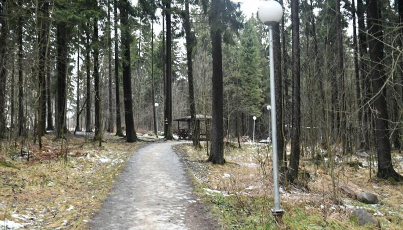 В парке на Ключевой отремонтируют сломанные фонари