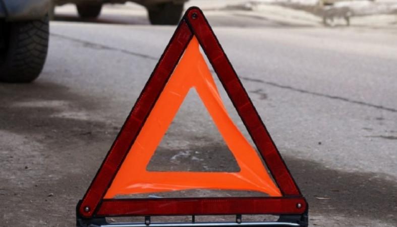 Водитель, сбив женщину с собакой в Петрозаводске, скрылся с места ДТП