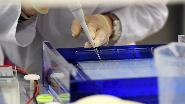 Три российских прототипа вакцины от COVID-19 показали эффективность