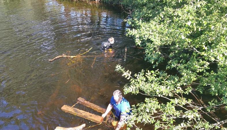 Спасатели достали бревна, шины и другой хлам из реки в Медвежьегорске