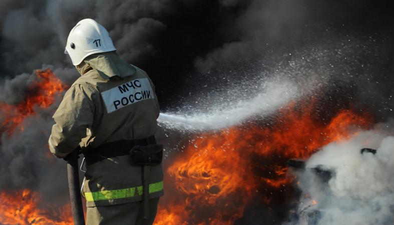 Пожары в Кондопожском и Питкярантском районах Карелии успешно потушены