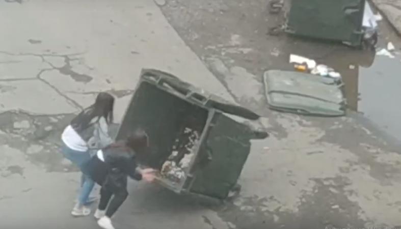 Девушки утром развлекались в Петрозаводске, громя мусорные баки