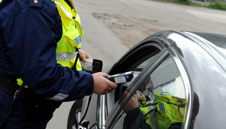 Под Петрозаводском пройдут сплошные проверки водителей