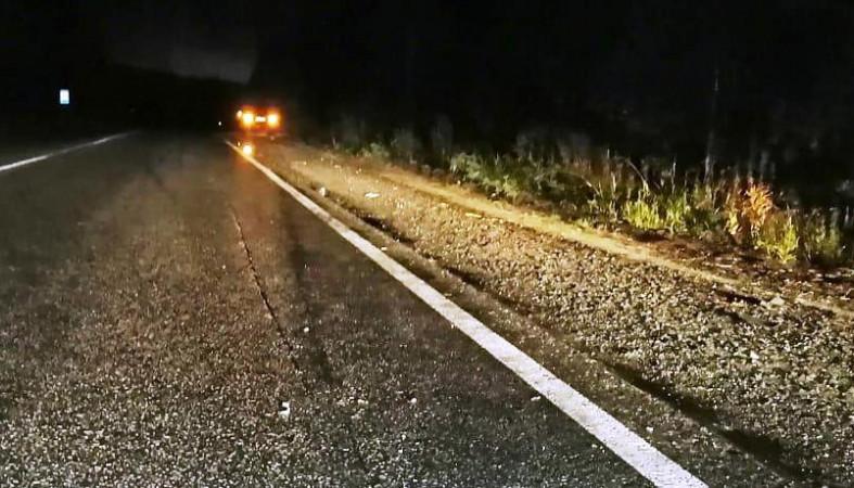 Пешехода сбили на трассе в Карелии