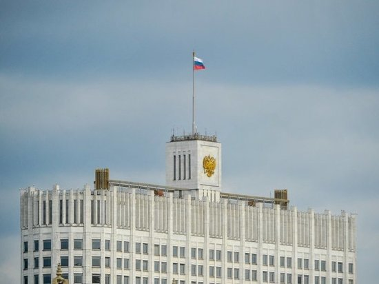 На борьбу с воронами над Домом правительства потратят 42 млн рублей