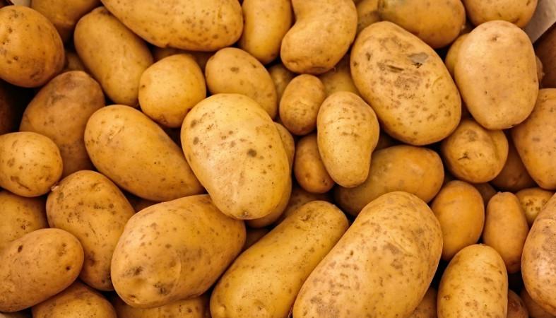 Картошку и яблоки раздают нуждающимся в Петрозаводске