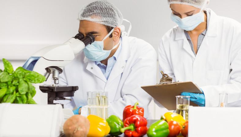 Роспотребнадзор Карелии открыл горячую линию по плодоовощной продукции