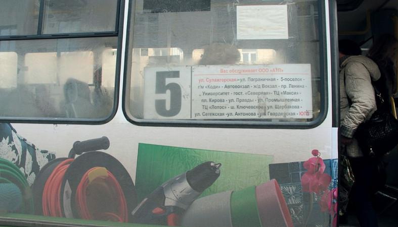 Петрозаводчанка попросила Путина помочь решить проблему с автобусами