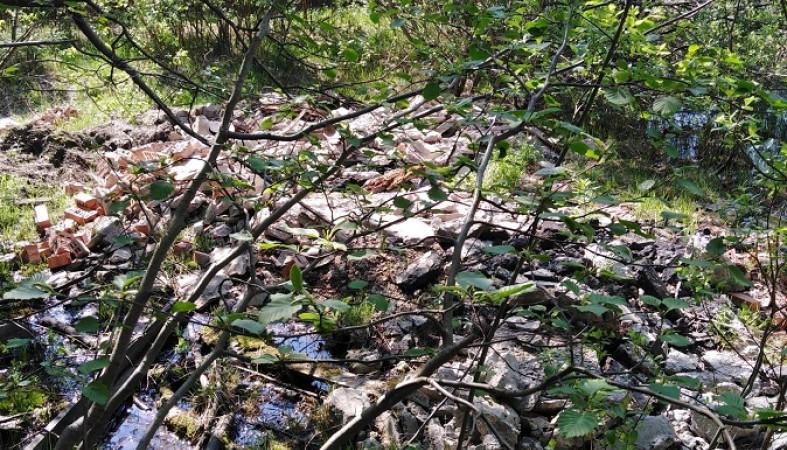 После субботника парк «Беличий остров» на Кукковке вновь зарос мусором